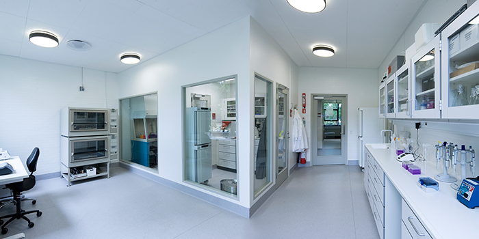 Cell Lab (Photo: Torben Nielsen)